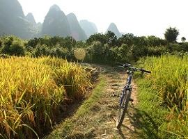 Bike, Guangxi