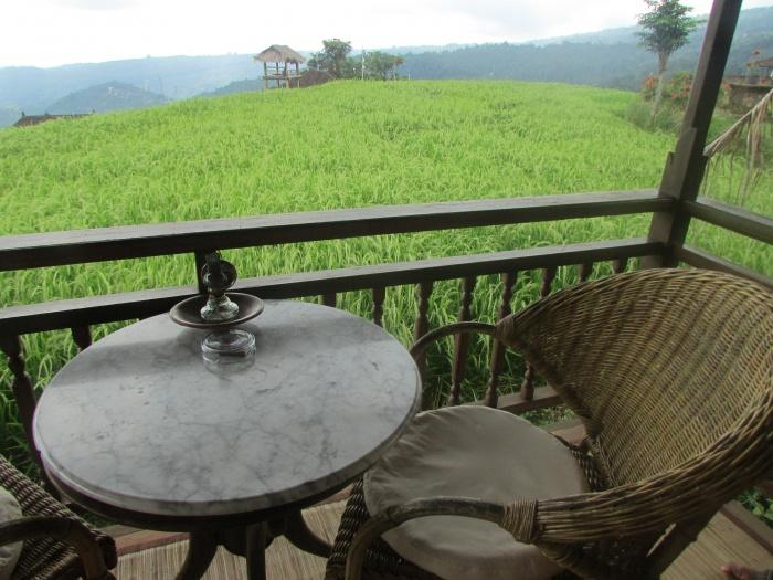 Views from the terrace, Puri Lumbung