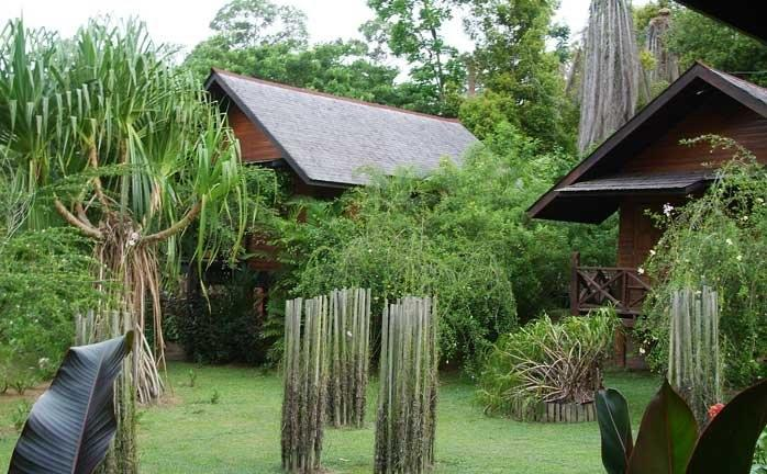 Chalets, Sepilok Nature Resort