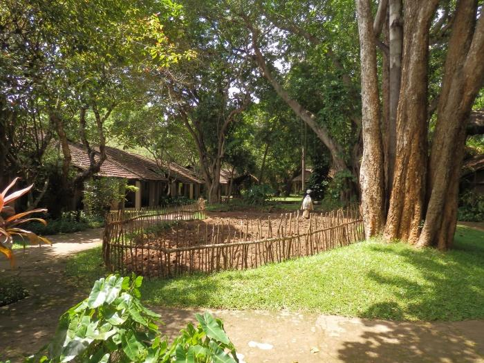 Grounds, Sigiriya Village Hotel