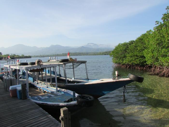 Boats, The Menjangan
