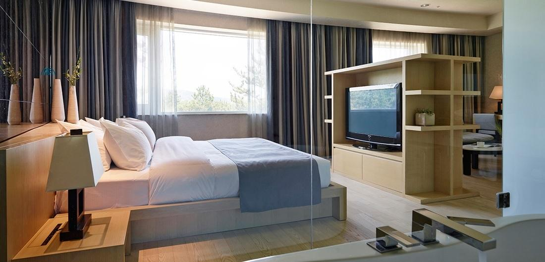 Deluxe Room, The Suites Hotel, Gyeongju