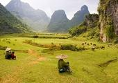 The Natural Beauty of Northeast Vietnam