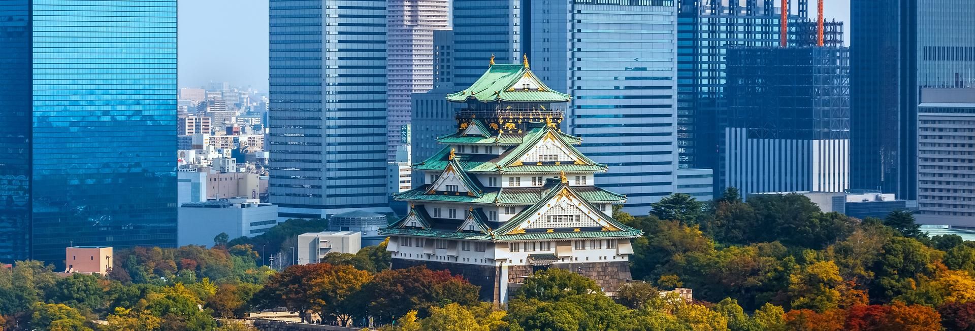 Osaka Castle and Skyline