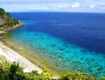 Apo Island, off Negros, the Philippines