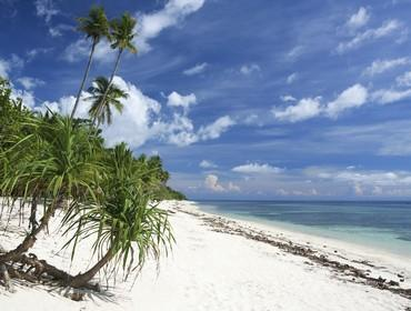 Beach, Siquijor, the Philippines