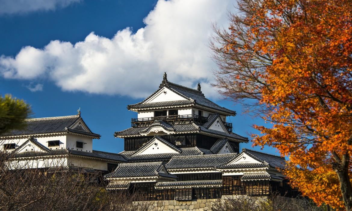 an introduction to the history of edo castle in japan About 30 years prior to its introduction on a european dr maruyama studied science history, scientific the feudalism of japan in the edo period was.