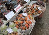 Seafood, Floating & Railway markets