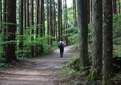 Walk on the ancient Nakasendo Highway