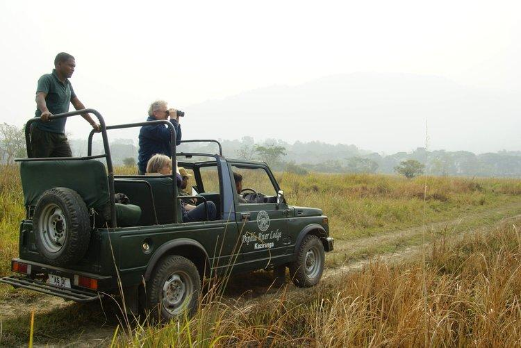 Safari, Diphlu River Lodge