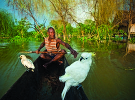 Local paddling, Sepik River