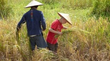 family adventure in laos