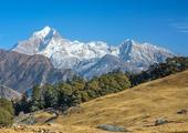 Hiking in the Himalayan Foothills