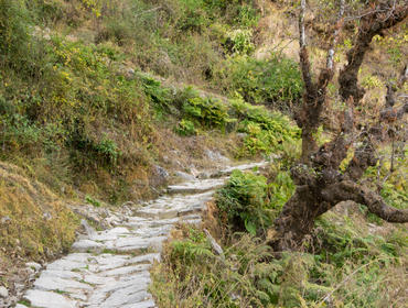 Walking path in Kumaon Hills