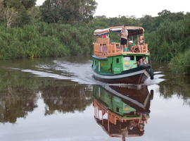 Boat, Tanjung Puting National Park