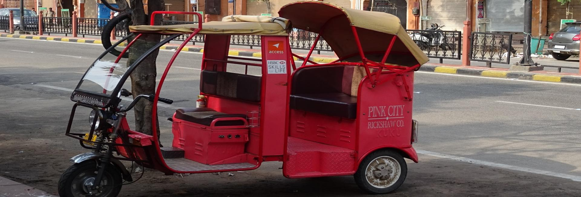 Pink City Rickshaw Tour, Jaipur