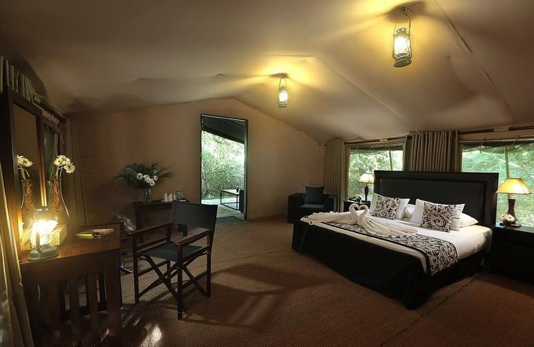 Suite, Leopard Trails