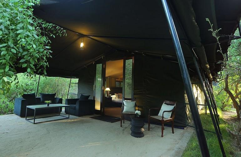 Exterior Suite, Leopard Trails