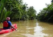 Kayaking on the Kampot River