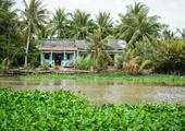 Visit Ben Tre in the Mekong Delta