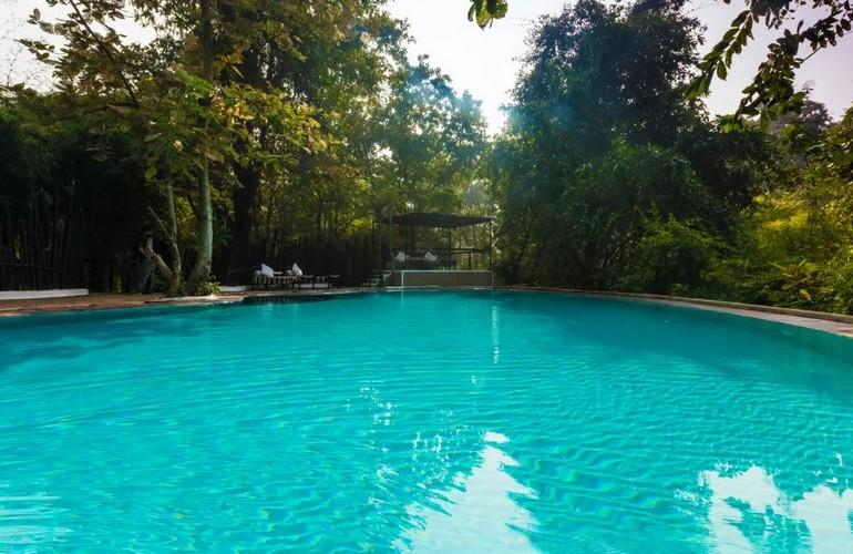 Swimming Pool, Reni Pani Jungle Lodge