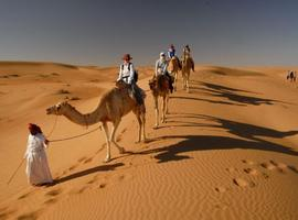 Camel riding, Wahiba Sands